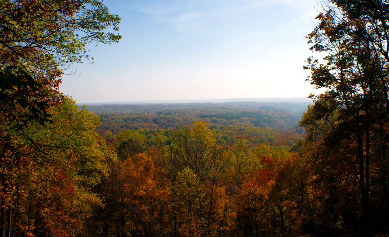indiana state forest by Paul J Everett, on Flickr